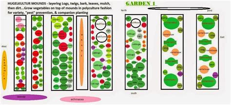 Companion Garden Layout Ginsbooknotes Com Companion Vegetable Garden Layout