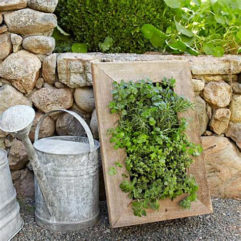 Indoor Outdoor Living Wall Planter Gallery Grovert Living Wall Planters
