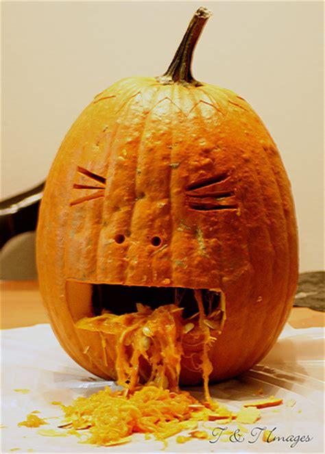 throwing up pin pumpkin throwing up on