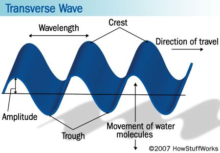 Are Light Waves Transverse by Michael J Allen