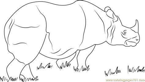 rhino coloring page one horned rhino coloring page free rhinoceros coloring