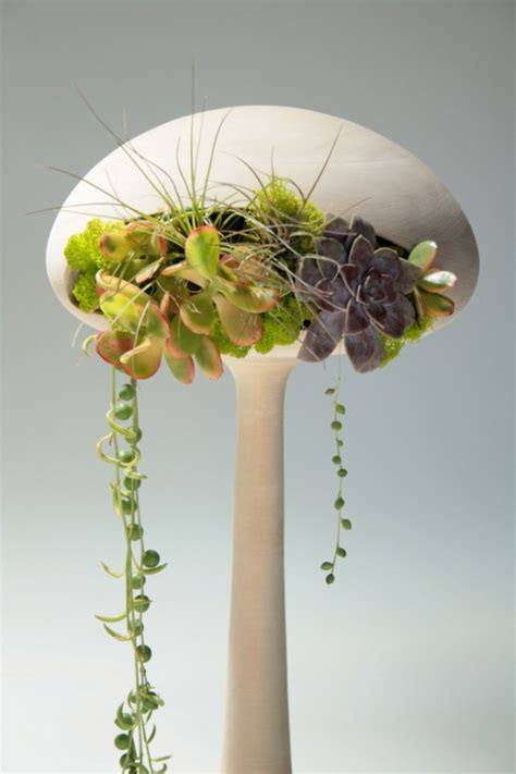 inside plants indoor plants that purify air in living spaces