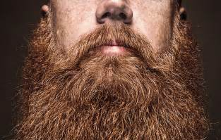 trimmed pubic hair mens facial hair texture www pixshark com images galleries