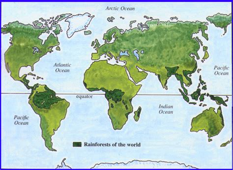 rainforest map the registry of nature habitats forest