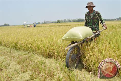 Baju Karung Bulog panglima kodam vii wirabuana topi petani seragam baru tni