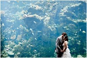 wedding at the california academy of sciences san