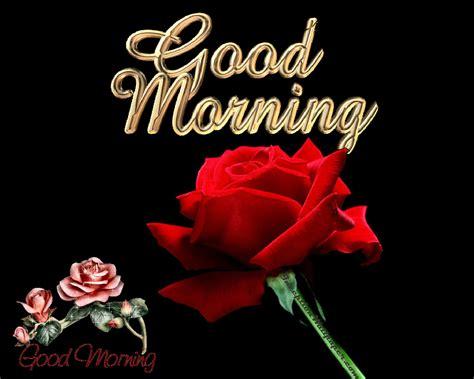 wallpaper free download good morning good morning wallpaper free download wallpaper