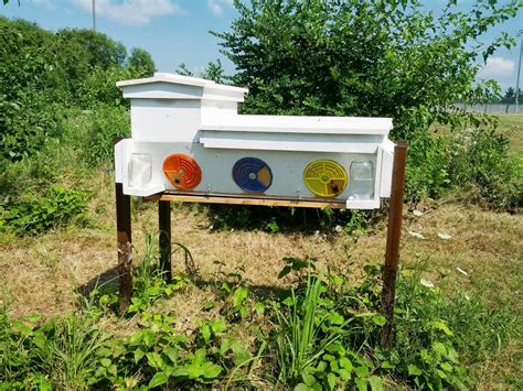 top bar hive frames top bar hive with langstroth frames 28 images langstroth hive to top bar hive