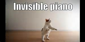 Invisible Cat Memes - no excuses mom maria kang shares unedited unapologetic