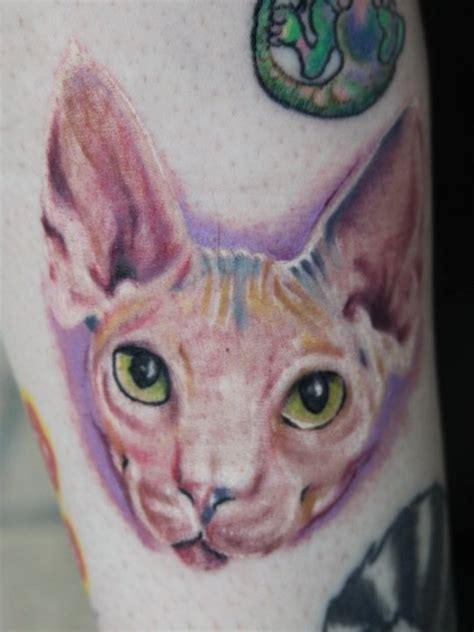 hairless cat tattoo tattoos pinterest