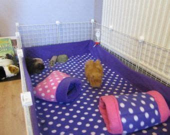 best bedding for hedgehogs 17 best images about hamsters and such on pinterest