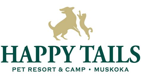 happy tails happy tails pet resort happy tails pioneer in cage free pet care