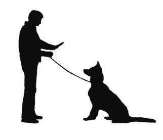 how to your tricks and obedience what is the difference between obeisance and obedience quora