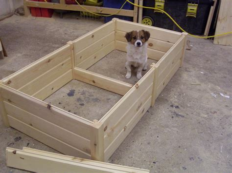 puppy box wooden puppy whelping box bed high quality 3 sizes ebay