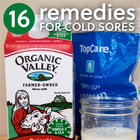 16 home remedies for cold sores herbs info