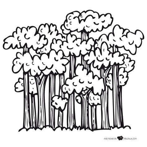 imagenes para colorear bosque bosque frondoso dibujalia dibujos para colorear