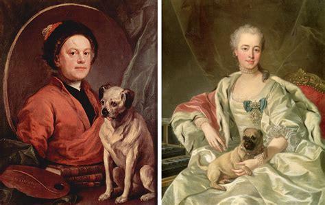 william hogarth pug no compres pugs y bulldogs advierten los veterinarios revista mira