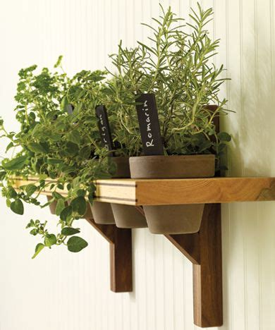 Herb Shelf | herb shelf great ideas pinterest
