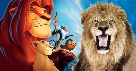 film lion roi d 233 couvrez le casting du live action le roi lion pr 233 vu pour