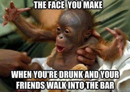 Monkey Face Meme - 27 funny drunk meme pictures you have ever seen