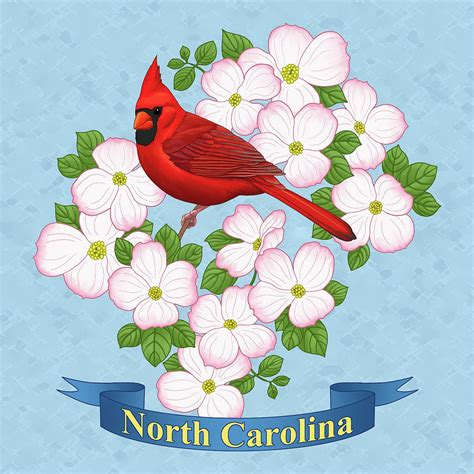 state bird of north carolina north carolina state bird and flower painting by crista forest