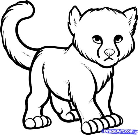 cute cheetah coloring page how to draw a baby cheetah baby cheetah step by step
