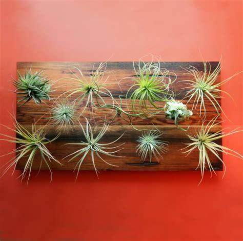 diy vertical garden tool from flora grubb design sponge