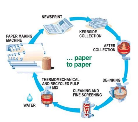Process Of Paper - how does recycling work guernseydonkey
