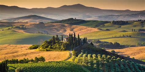 best wine in tuscany the best wines in tuscany great italian chefs