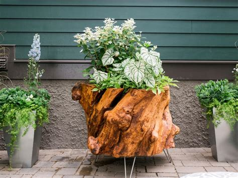 How To Make A Planter Out Of A Recycled Tree Stump Hgtv Tree Stump Planter