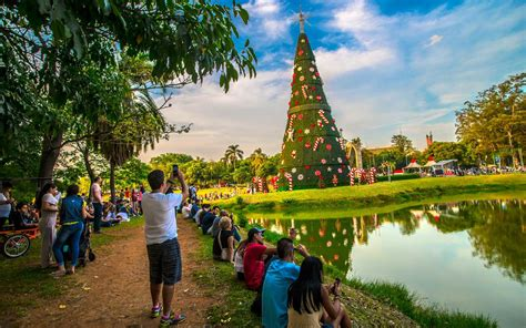 christmas trees in brazil the classic the and the absolute most festive trees around the world travel