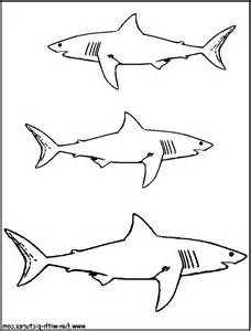 Shark Fin Template by Printable Shark Coloring Pages For 187 Coloring Pages