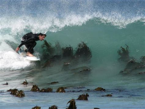 Surfing Dangers by Winter Surfing Spots