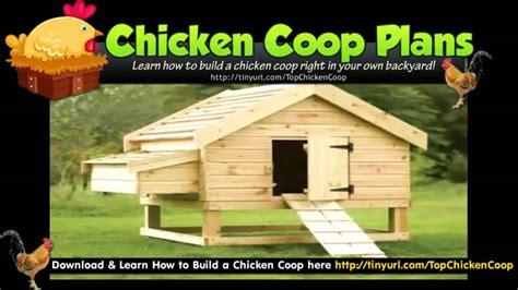 plans for hen house hen houses chicken pens plans design youtube
