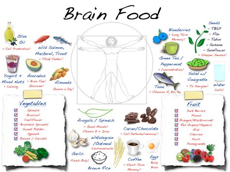 how to feed a brain nutrition for optimal brain function and repair books foods that give your brain power educate