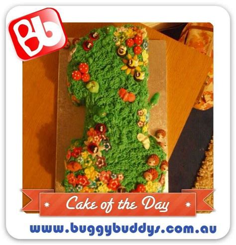 Wedding Anniversary Ideas Perth Wa by 22 Best Birthday Cakes I Made Images On