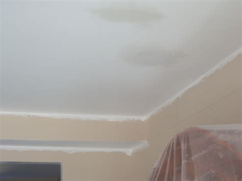 Water Stain Ceiling by Water Stains On Ceiling Repair Winda 7 Furniture