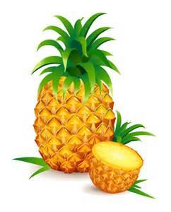 Realistic pineapple vector topvectors com