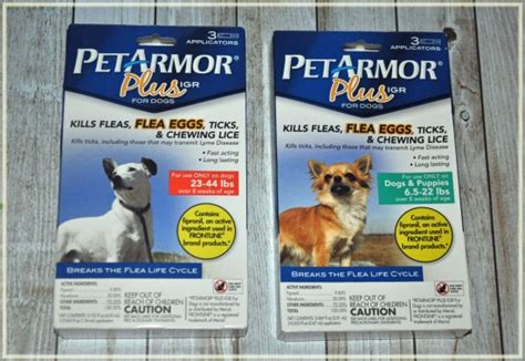can dogs carry lice protect your dogs this with petarmor plus igr s fabulous finds