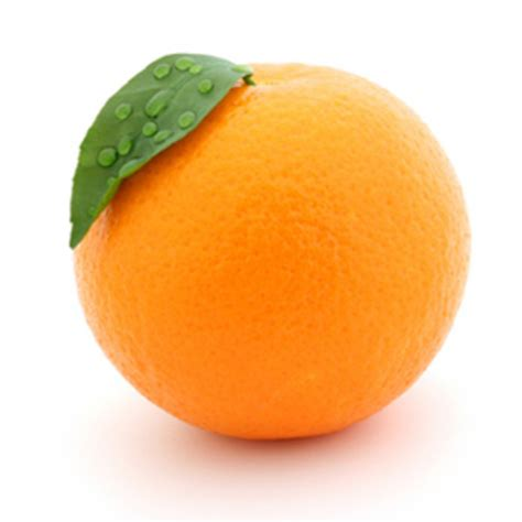Fruity Orence orange fruit orange photo 34512935 fanpop