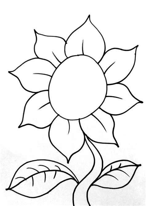 gambar bunga matahari  diwarnai  mewarnai bunga