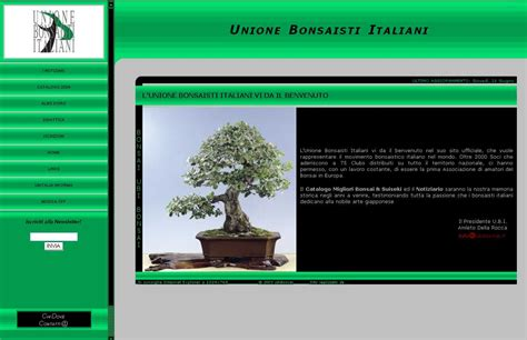 ubi sito u b i unione bonsaisti italiani associations and clubs