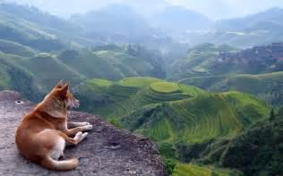 Relaxing 29 November 2014 Meditation Is A Balancing Act Between