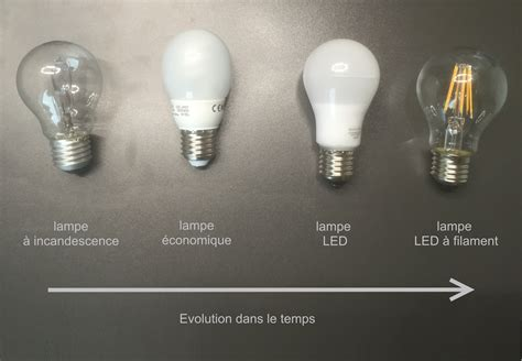 D La L Evolution De L Oule Minusines