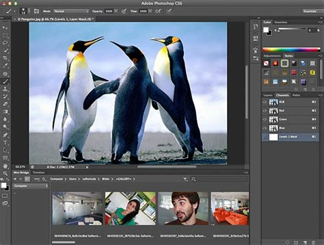 adobe reader photoshop cs6 free download full version adobe photoshop cs 6 extended 13 0 1 highly compressed