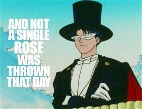 Tuxedo Meme - 396 best images about tuxedo mask on pinterest sailor