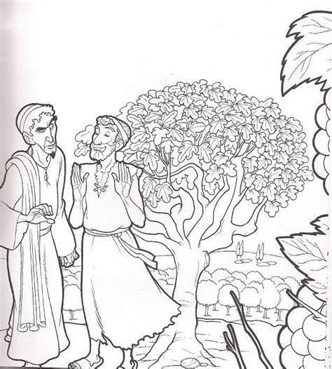 coloring page of a fig tree coloring page parable of the fig tree pinterest fig