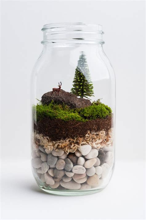 Handmade Terrariums - 25 best ideas about jar terrarium on