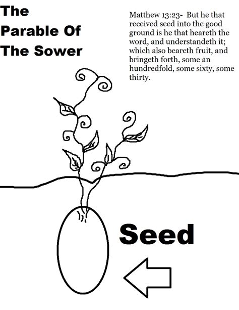 the parable of the sower sunday school lesson