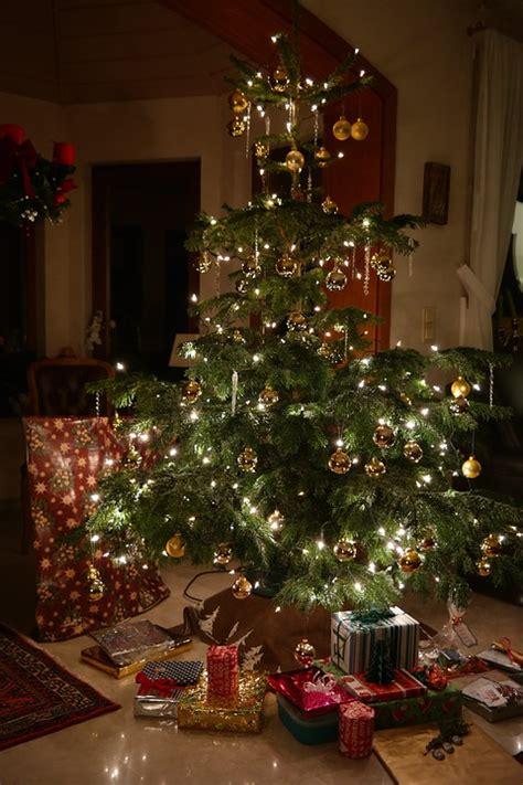 kostenloses foto weihnachten christbaum kostenloses